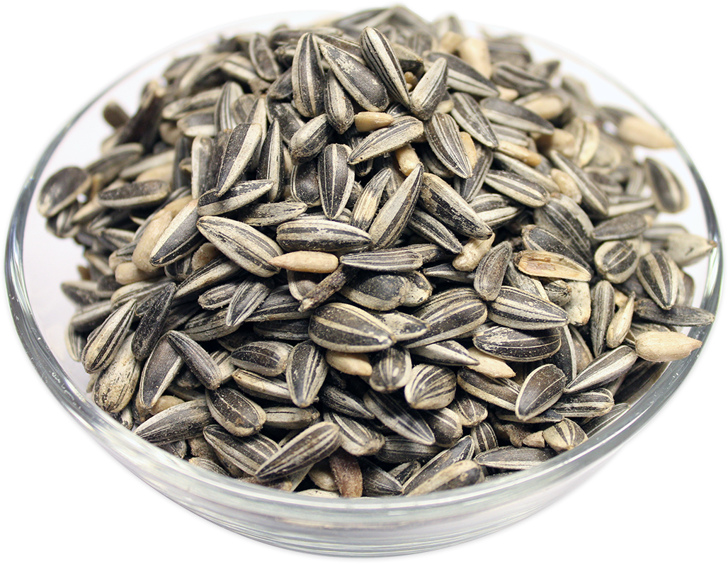 Striped Sunflower Seeds in Shell